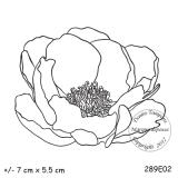 289e02