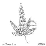 323e05